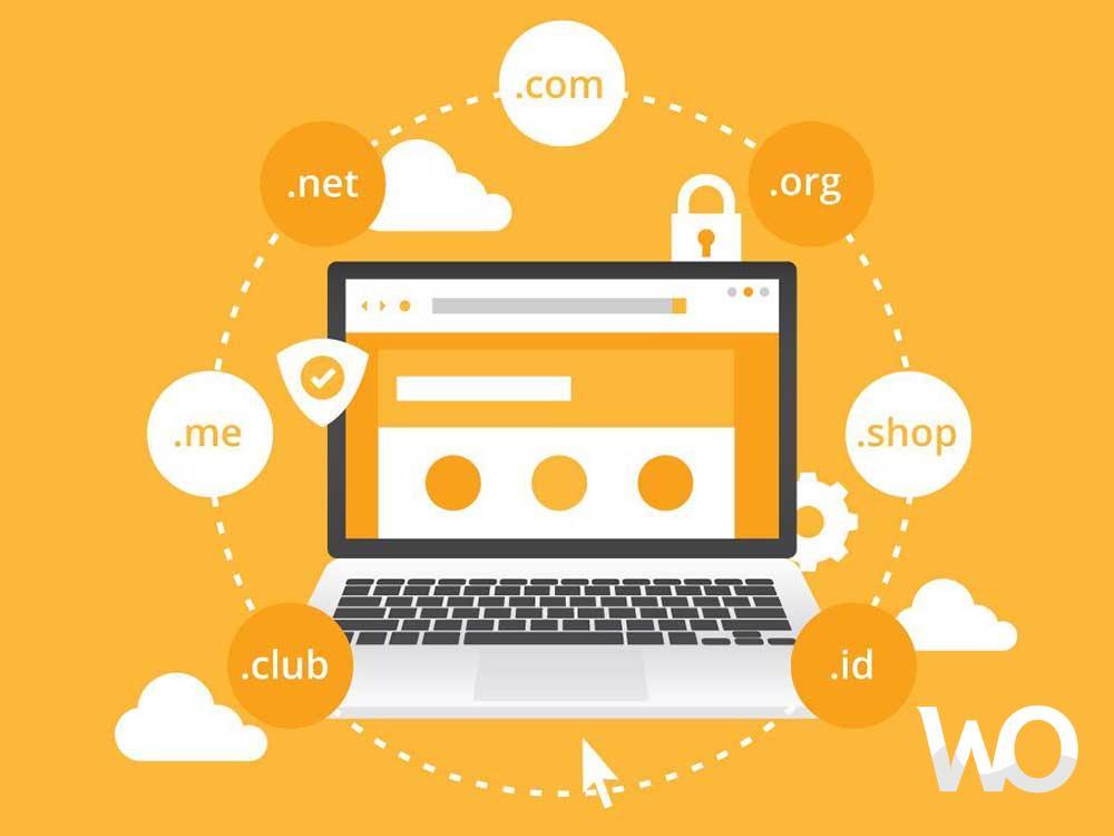 Domain Nedir – Hosting Nedir?