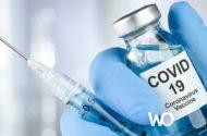 İnsanlara yapılan COVID-19 aşı testleri başarılı oluyor!