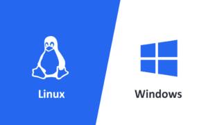Windows wsl2 ile Linux Kerneline destek veriyor… Hadi Canım